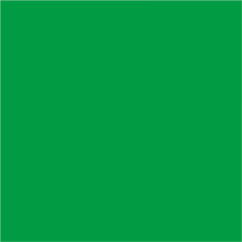 Bresser BR-9 Background Cloth 3x4m Green Main Image