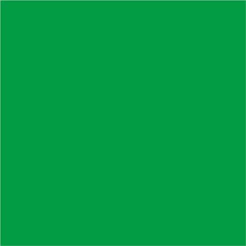 Bresser BR-9 Achtergronddoek 6x6m Groen Main Image