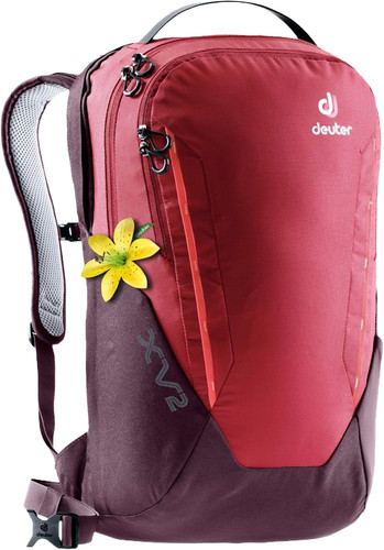 "Deuter XV 2 15"" Cranberry Aubergine 19L - Slim fit Main Image"