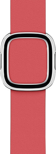Apple Watch 40mm Modern Leather Watch Strap Pioen - Medium Main Image