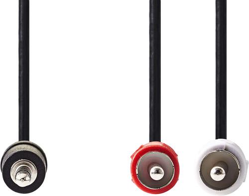 Nedis 3,5 mm naar RCA Kabel 2 Meter Zwart Main Image
