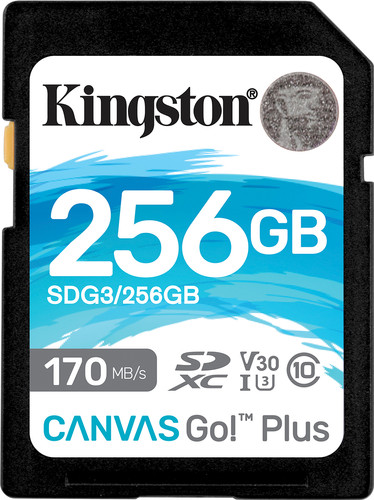 Kingston Canvas Go Plus 256GB Main Image