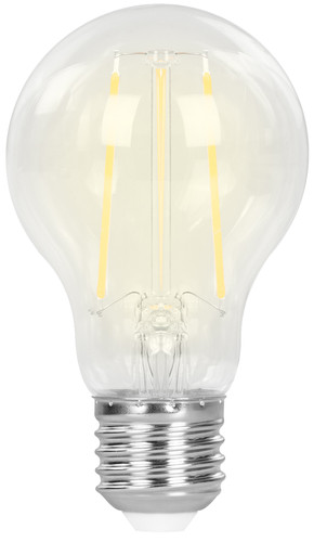 Hombli Smart Bulb E27 Filament dimbaar wit Main Image