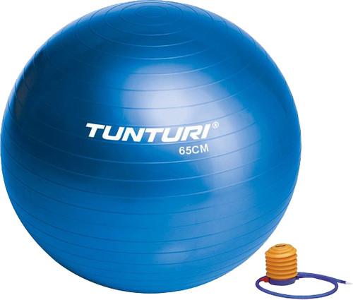 Tunturi Gymball 65 cm Blue Main Image