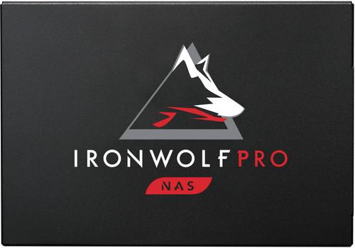Seagate IronWolf 125  Pro 960 GB Main Image