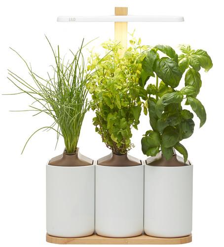 Pret a Pousser Indoor Garden Lilo Connect Main Image