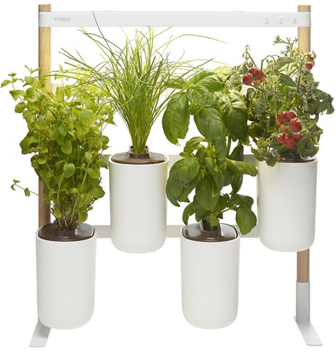 Pret a Pousser Indoor Garden Modulo 2 Main Image