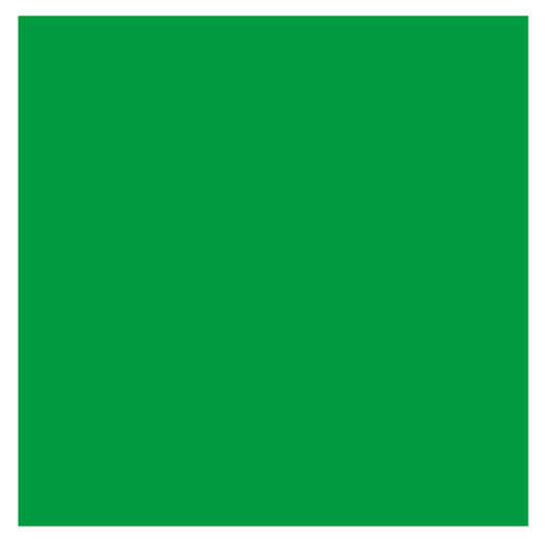Bresser BR-9 Background Cloth 2.5x3m Green Main Image