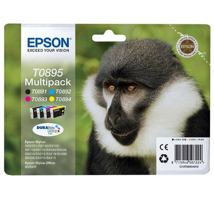 Epson T0895 Cartridge 4-Kleuren Pack (C13T08954010)