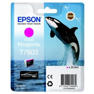 Epson T7603 Cartridge Magenta C13T76034010