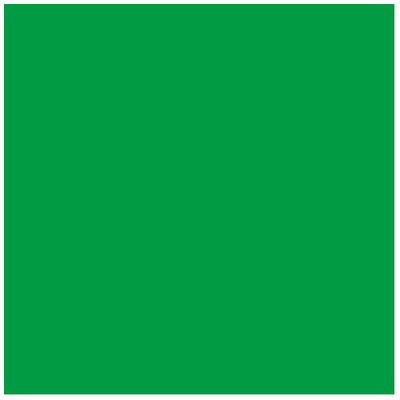 Image of Bresser BR-9 Achtergronddoek 3x6m Groen