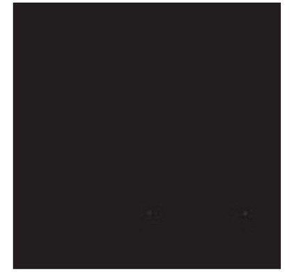 Bresser BR-9 Achtergronddoek 4x6m Zwart