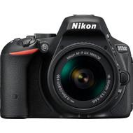 Nikon D5500 + AF-P DX 18-55mm F/3.5-5.6G VR