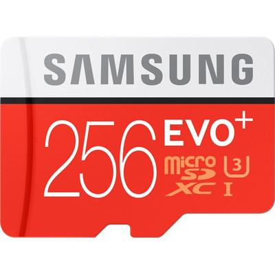 Samsung Evo + 256 GB micro SD class 10 with adaptor