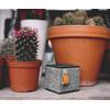 Rockbox Cube Fabriq Edition Zwart - 7