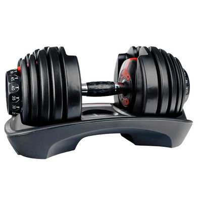 Image of Bowflex SelectTech 552i 1x 23.8 kg