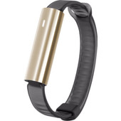 Misfit Ray Polished Gold/Zwart Sport Band