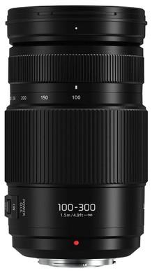 Panasonic Lumix G 100-300mm f/4-5.6