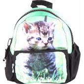 Adventure Bags Rugzak Kat
