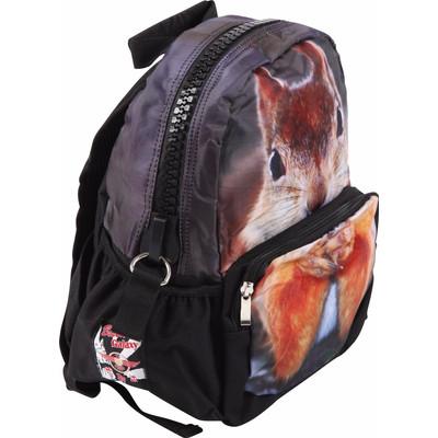 Image of Adventure Bags Rugzak Eekhoorn