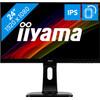 iiyama ProLite XUB2492HSU-B1