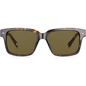 Fossil 2041/S Tortoise Brown/ Brown Gradient