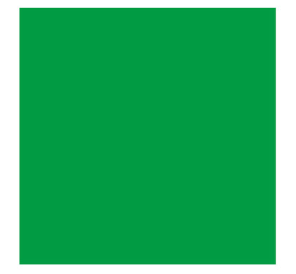 Bresser BR-9 Achtergronddoek 2.5x3m Groen