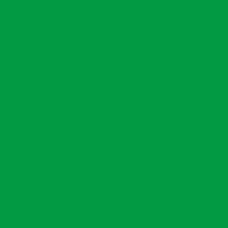 Falcon Eyes Achtergronddoek BCP-10 2,9x5 m Chroma Groen Uitwasbaar