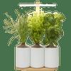Pret a Pousser Indoor Garden Lilo Connect