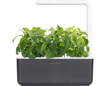 Click & Grow Smart Garden 3 - Dark Gray