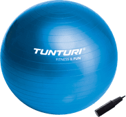 Tunturi Gymball 90 cm Blue