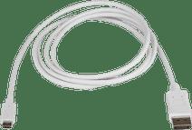 StarTech USB-C naar 4K 60Hz DisplayPort Converter 1.8 meter