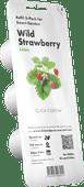 Click & Grow Navulling Aardbeien 3 Stuks