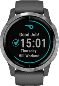 Garmin Vivoactive 4 Silver/Dark Gray 45mm