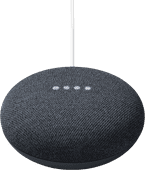 Google Nest Mini Grijs