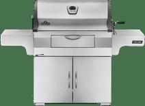 Napoleon Grills Charcoal Professional RVS