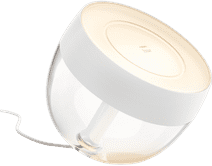 Philips Hue Iris White and Color Wit