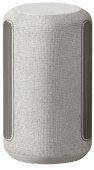 Sony SRS-RA3000 Grijs
